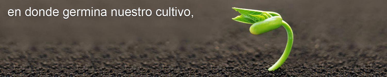 Humus de lombriz México Cocoonhumus